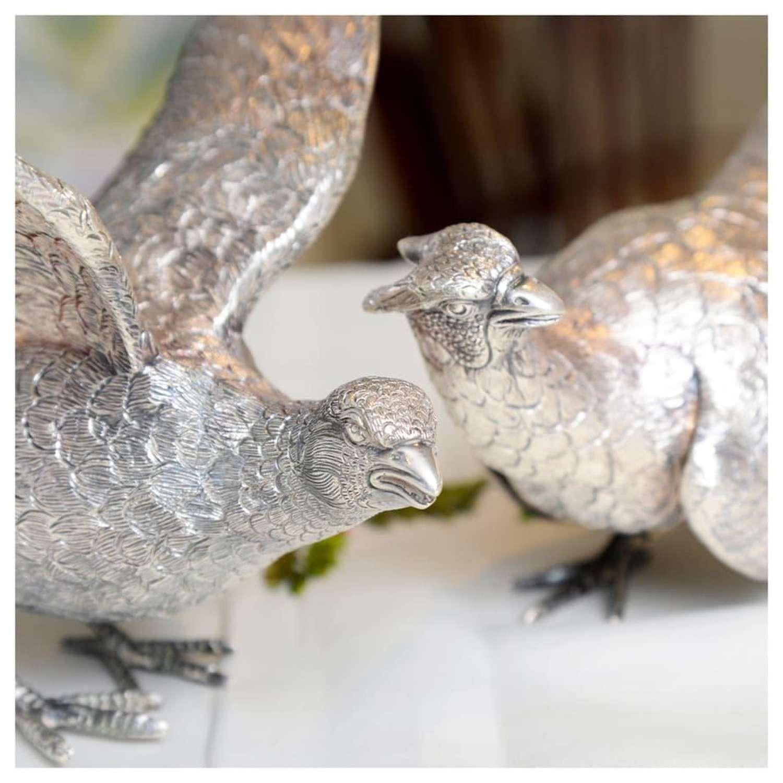 Pair of silver pheasants - by C. J. Vander