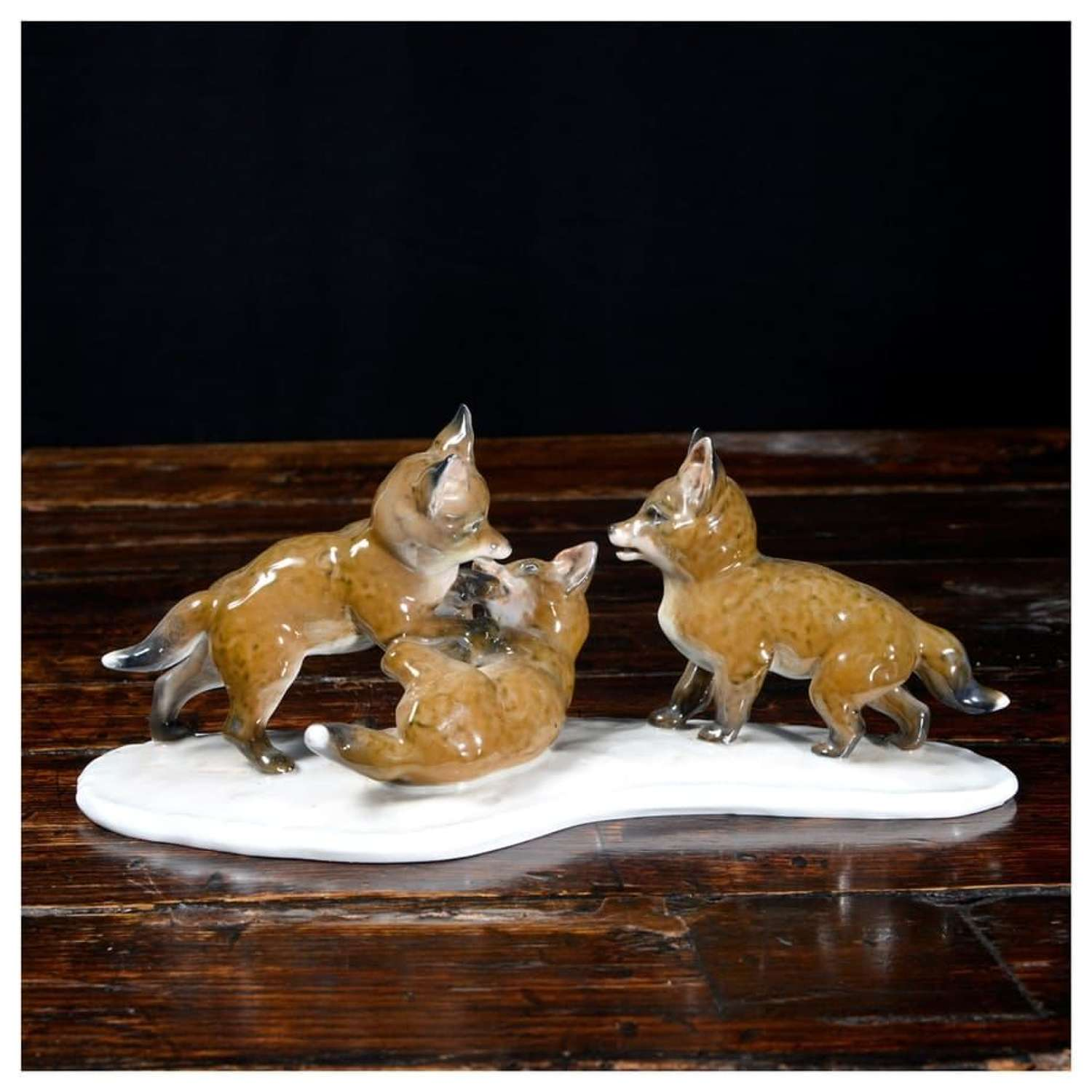 Rosenthal group of fox cubs playing - by Fritz Heindenreich