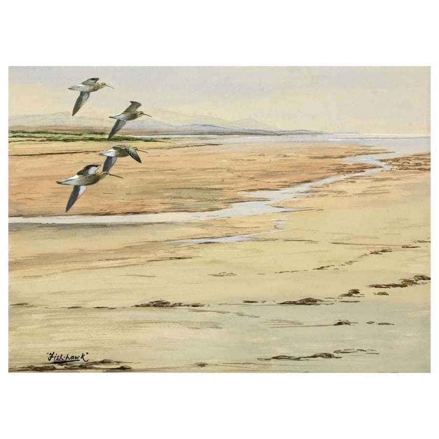 Christopher Michael Wolfe Murray 'Fish-Hawk' (1929-2010) Curlew, I