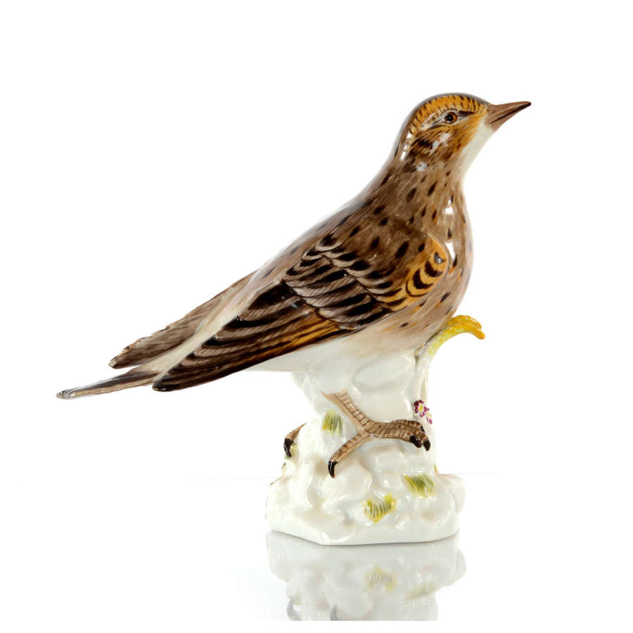 A Meissen figure of a Song Thrush, late 20th Century