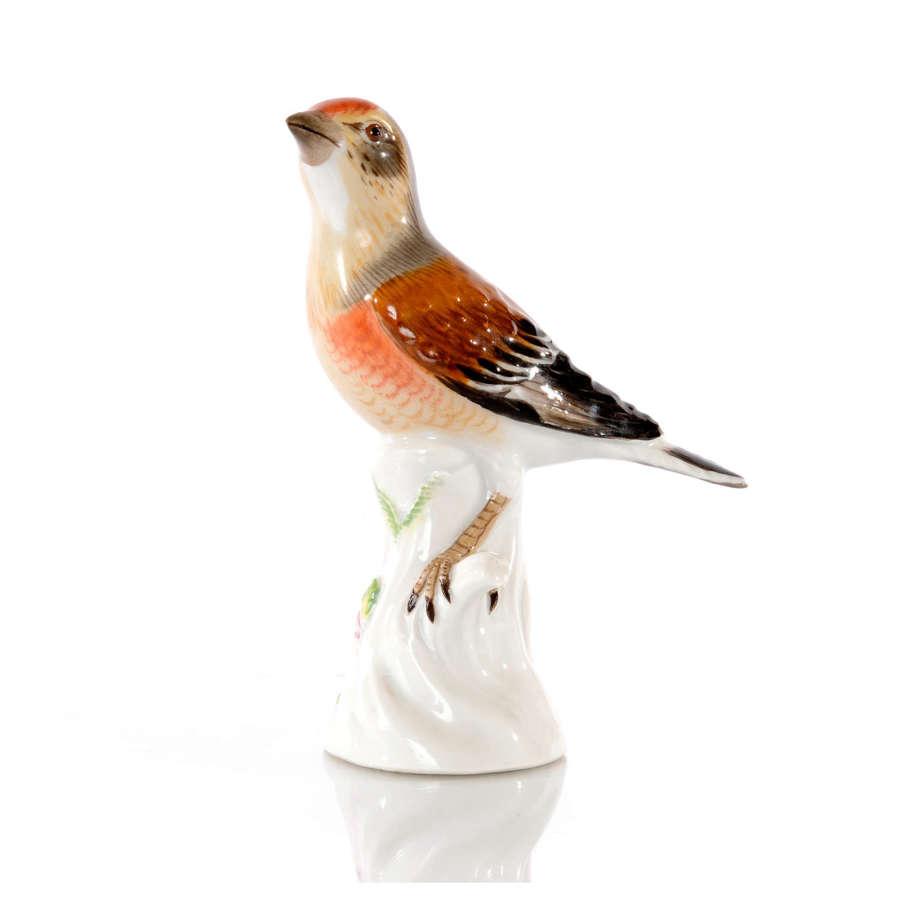 A Meissen figure of a Finch, mid 20th Century.