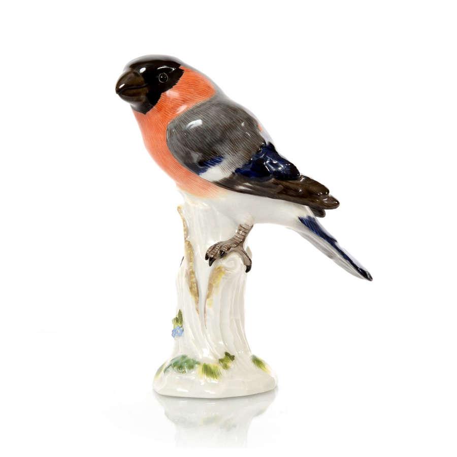 A Meissen figure of a Bullfinch, 20th Century.